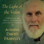 American Institute of Vedic Studies